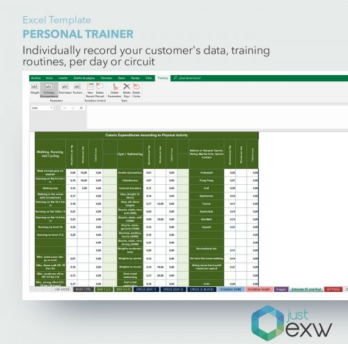 Excel Personal Training Template